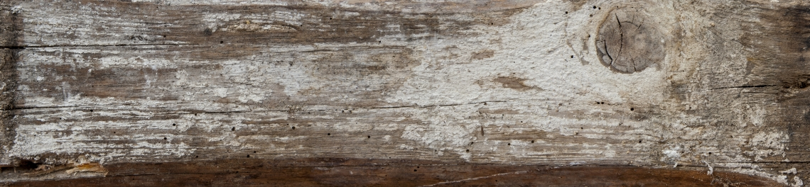 Wood Planks Old 0260