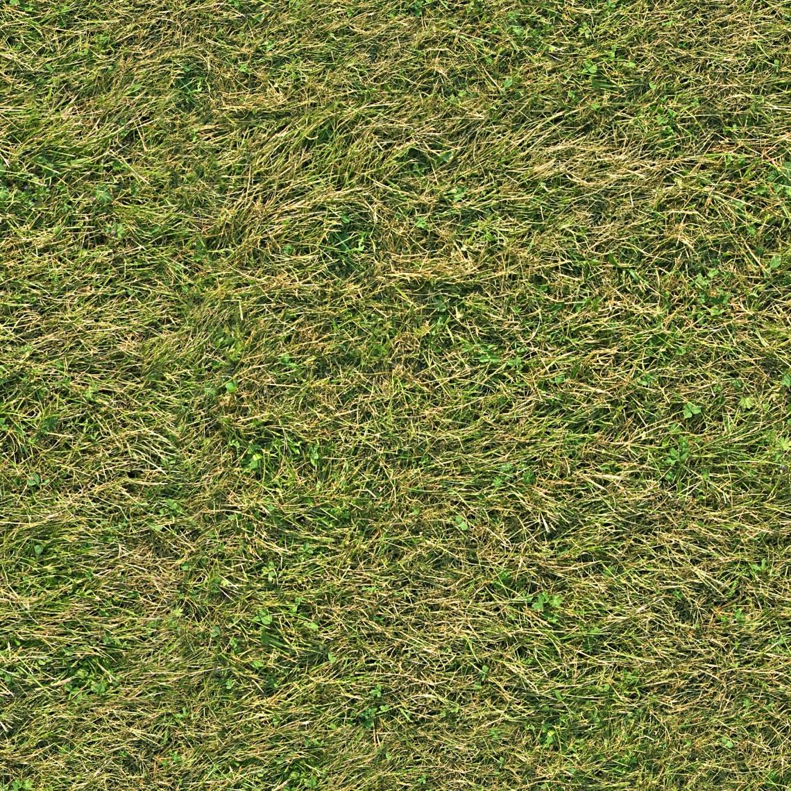 Seamless Grass