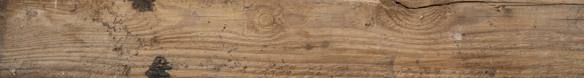 Wood Planks Old 0250