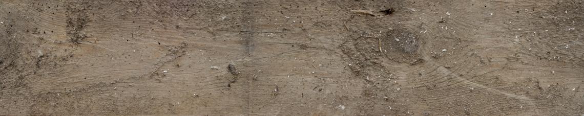 Wood Planks Old 0292