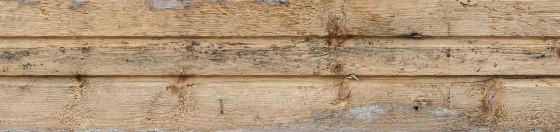 Wood Planks Old 0283