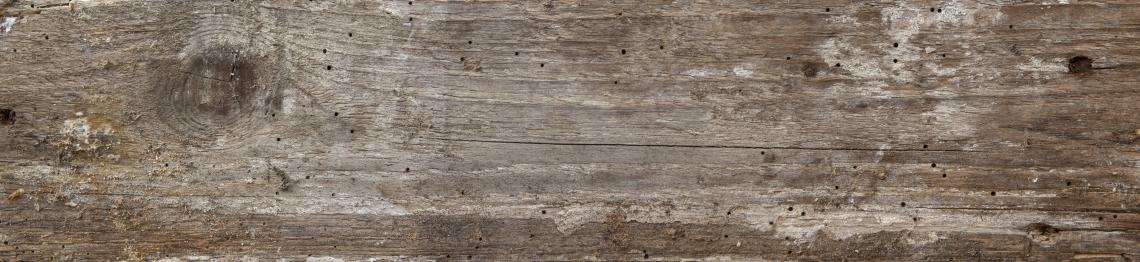 Wood Planks Old 0259