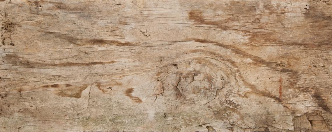 Wood Planks Old 0233