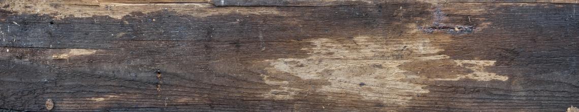 Wood Planks Old 0276