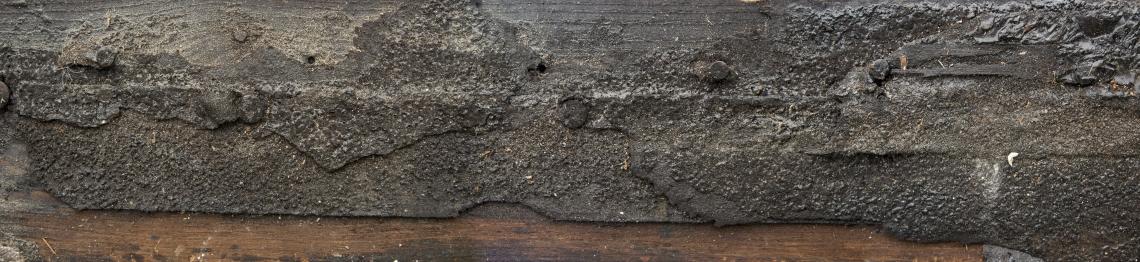 Wood Planks Old 0303