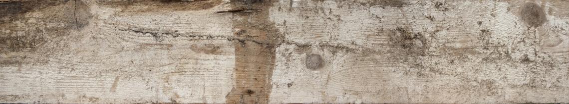 Wood Planks Old 0284