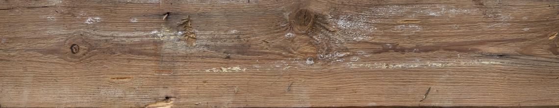 Wood Planks Old 0263