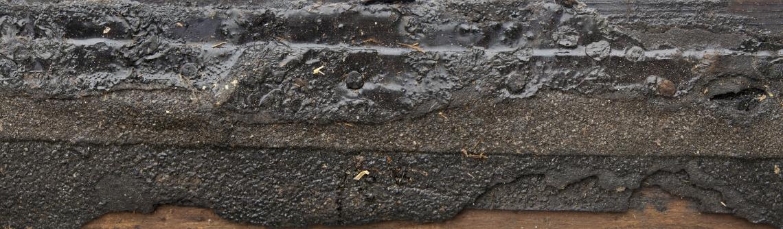 Wood Planks Old 0304