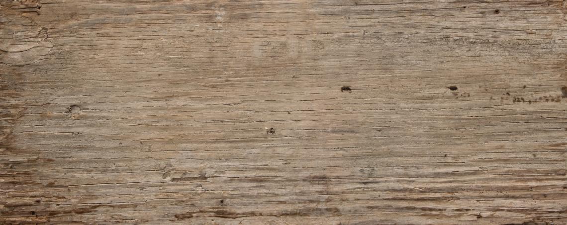 Wood Planks Old 0232
