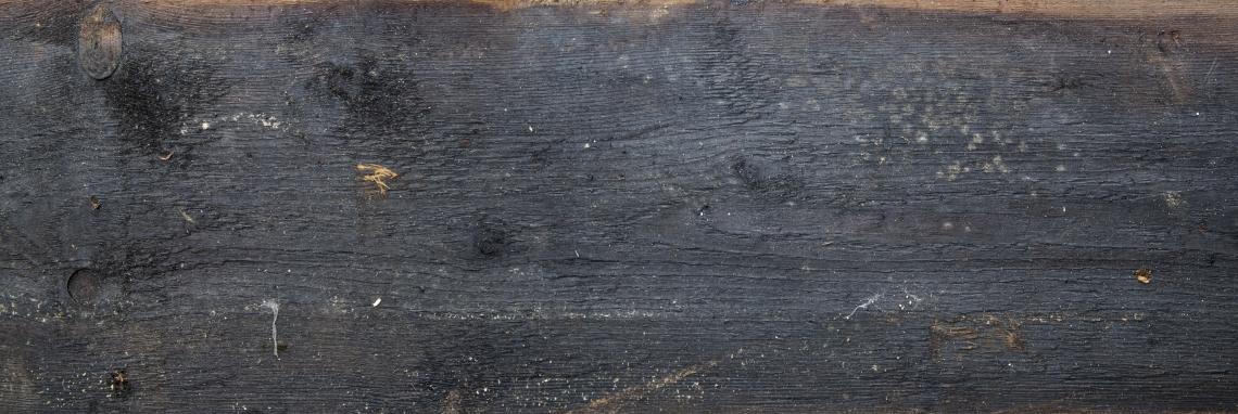 Wood Planks Old 0298