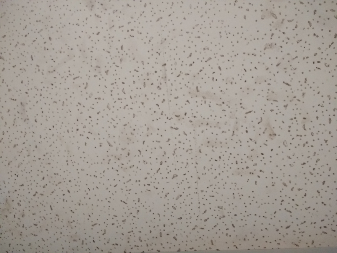 Grunge Ceiling Tile