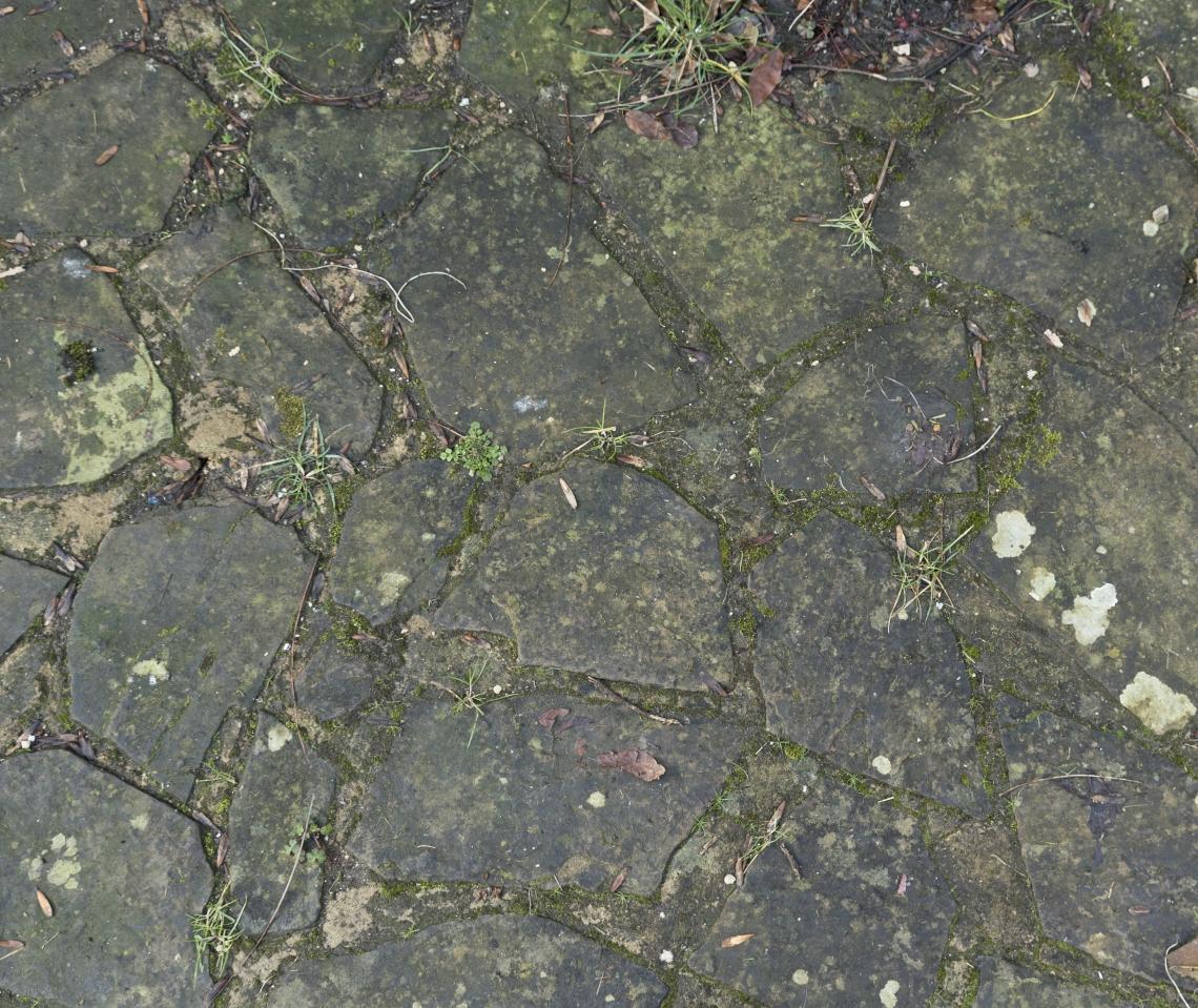 Ground Stoney 0143