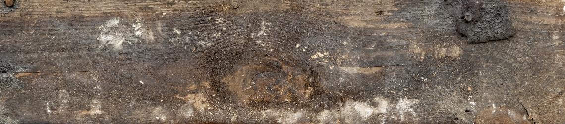 Wood Planks Old 0254