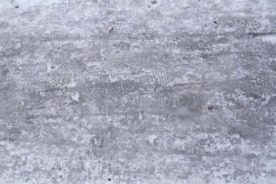 Ice Plain