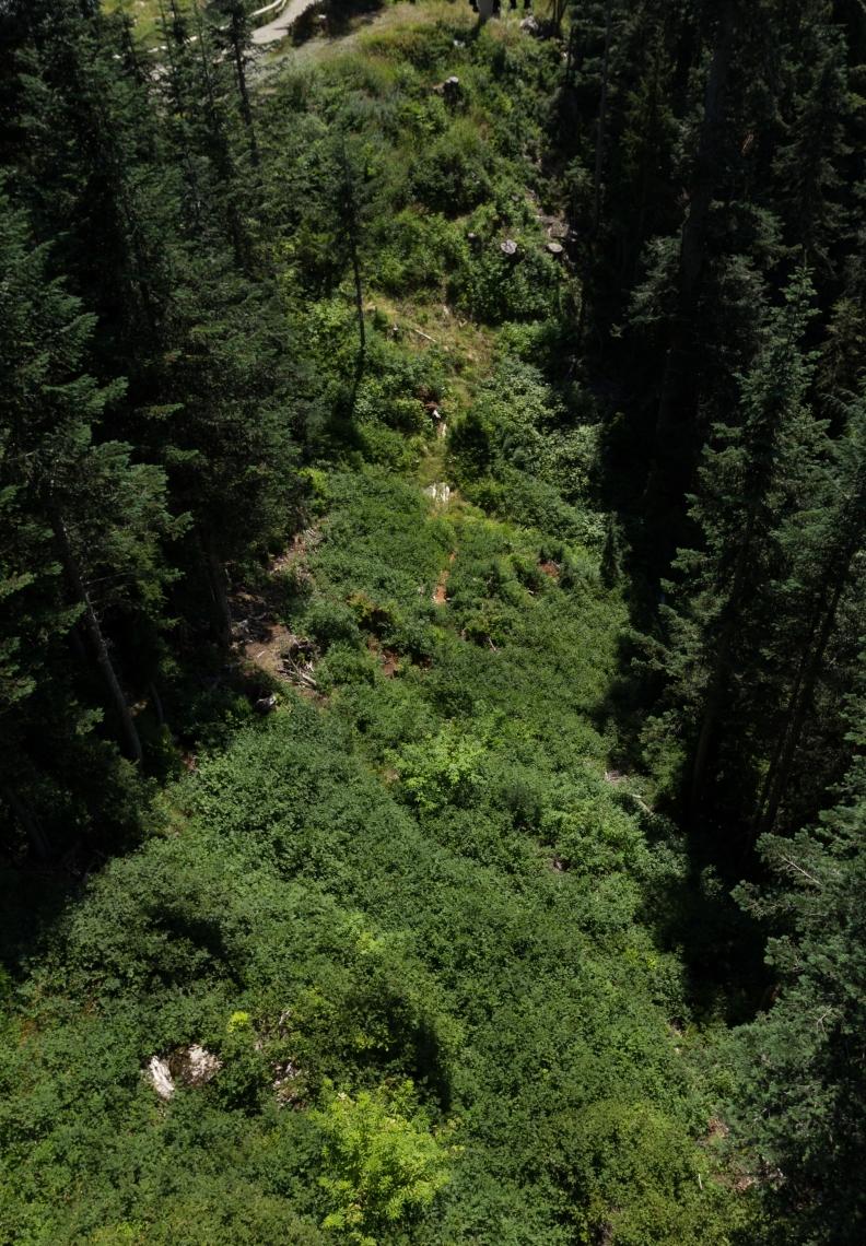 Landscapes Rural