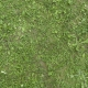 Grass Green 0208