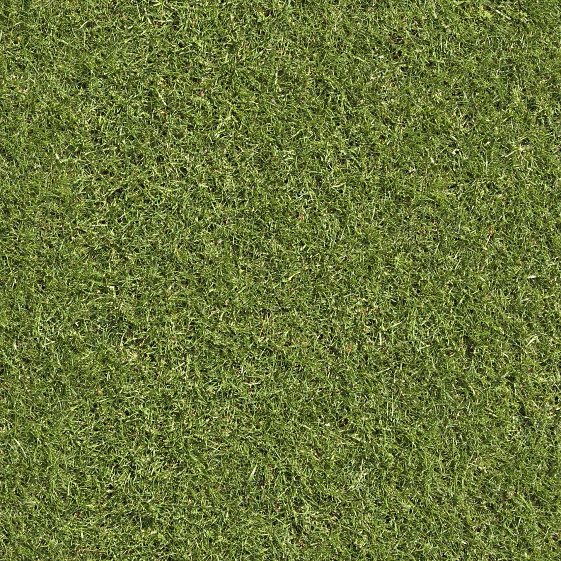 Seamless Grass Good Textures