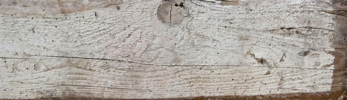 Wood Planks Old 0296