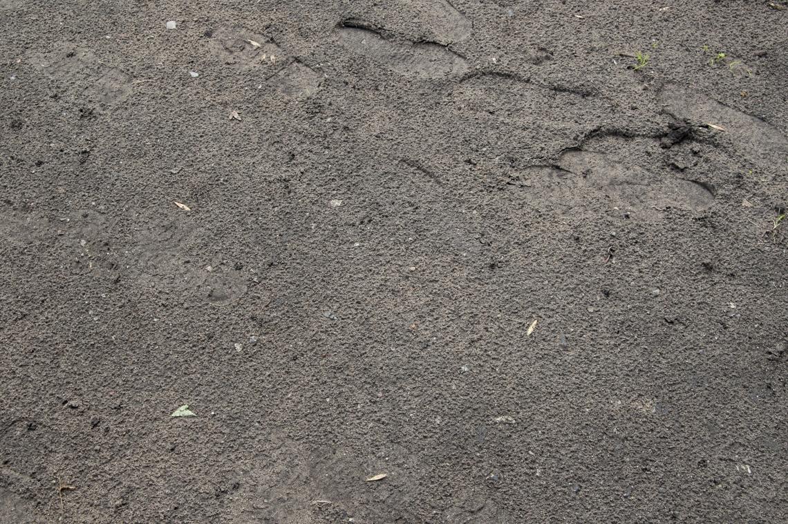 Ground Earth
