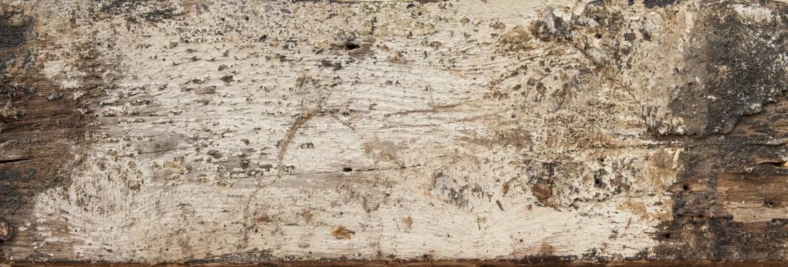Wood Planks Old 0261