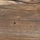 Wood Planks Old 0240