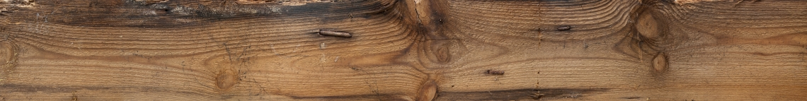 Wood Planks Old 0228