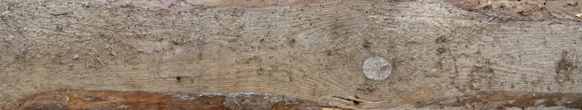 Wood Planks Old 0291