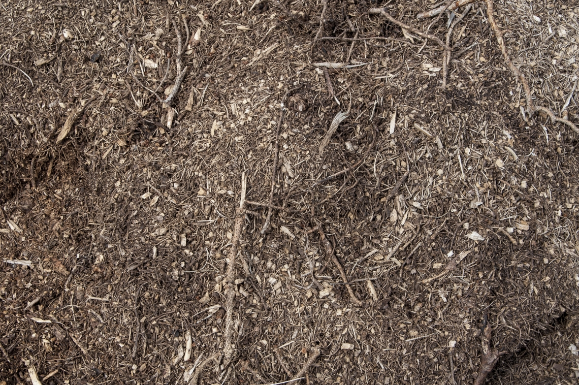 Ground Wood Chippings 0030