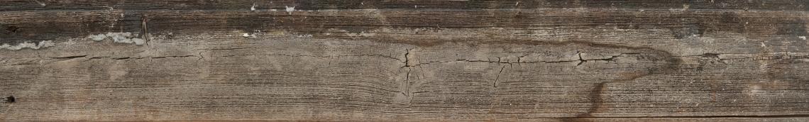 Wood Planks Old 0272