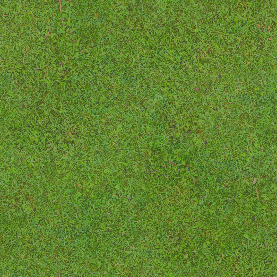 Grass Green 01 Albedo Good Textures
