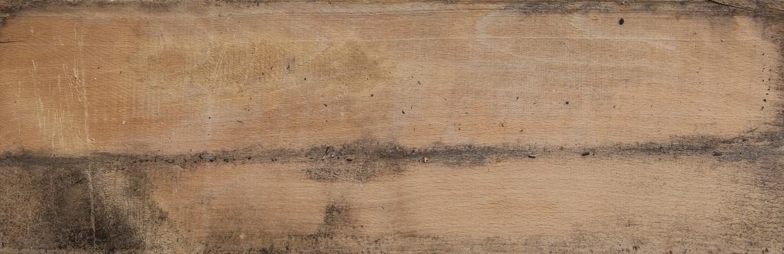 Wood Bare
