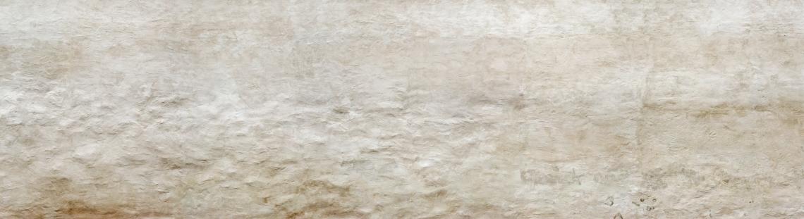 Plaster Panorama