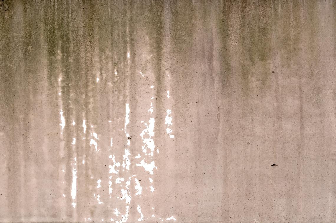 Decals0014