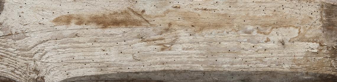 Wood Planks Old 0242