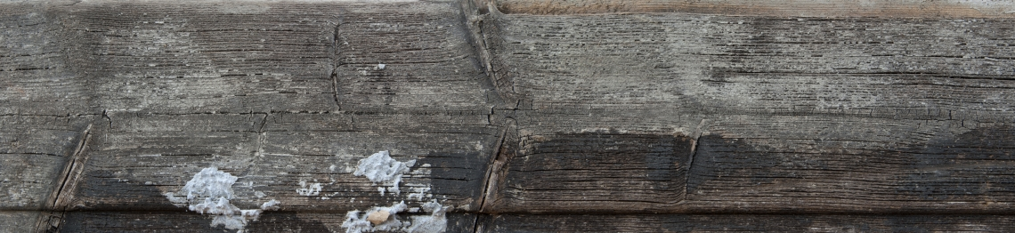 Wood Planks Old 0281