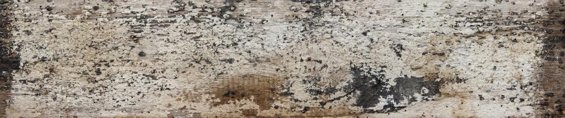 Wood Planks Old 0258