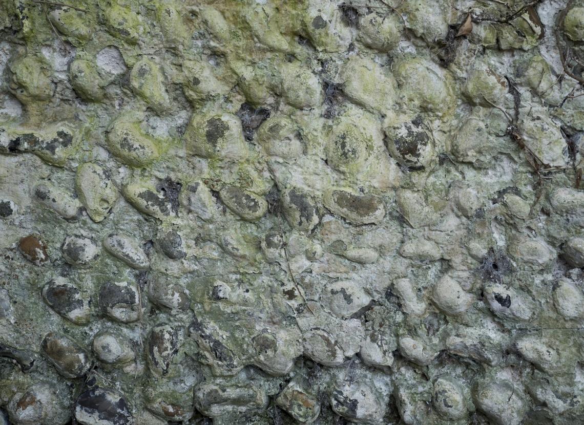 Wall Stoney 0008