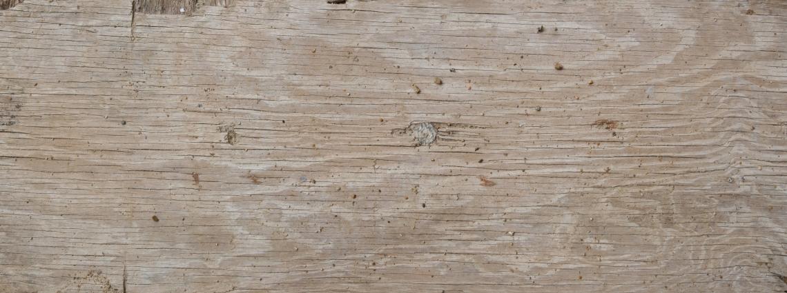 Wood Planks Old 0235