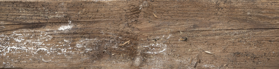 Wood Planks Old 0246